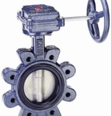 DJV-BL (Full Bore) Lug Type Butterfly Valve